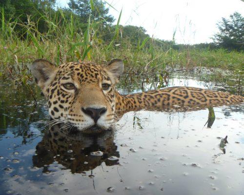 Amira in lagoon