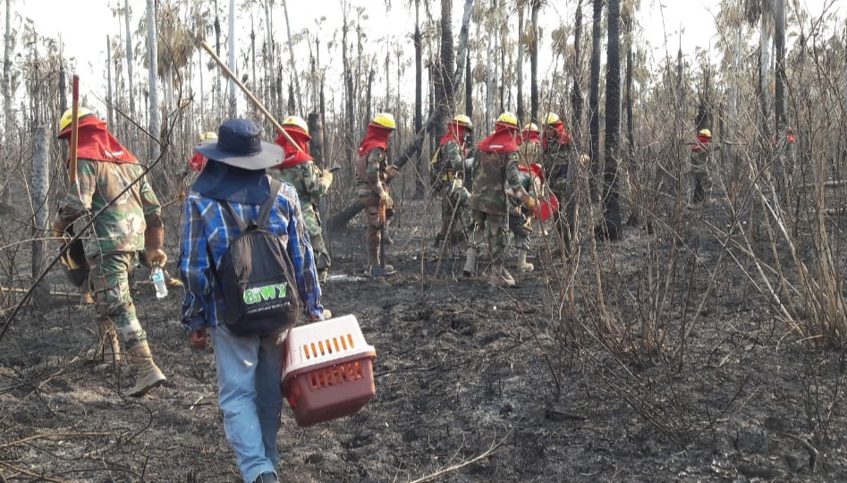 CIWY performs a search and rescue after fires swept through nearby rainforest